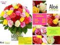 bouquet fleurs roses multicolores aloé fleurs forbach