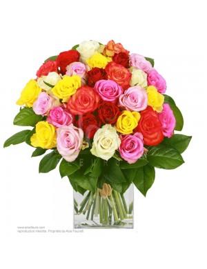 Bouquet l'Arlequin