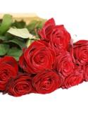Grandes roses à la pièce
