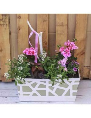 Jardinière 40cm blanc 7 plantes ton rose