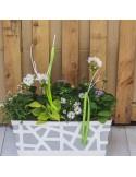 Jardinière 40cm blanc 7 plantes ton mauve/blanc