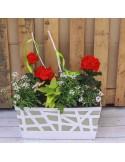 Jardinière 40cm blanc 7 plantes ton rouge