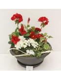 Composition cimetière 5 plantes rouge/blanc + Déco