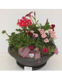Composition cimetière 5 plantes ton rose/rouge + Déco
