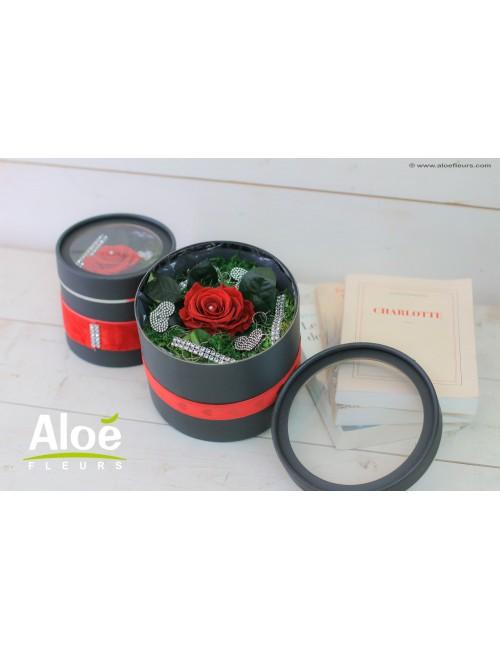 Flowerbox Eternelle
